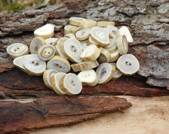 Natural White Tail Deer Antler Buttons, Lot of 10