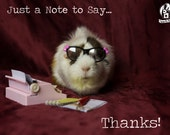 Thank You Guinea Pig Greeting Card