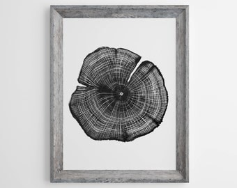 Tree Ring Print, Print Tree Ring, Photo Tree Ring, Tree Stump, Nature Print, Print Nature, Photo Nature, Trees, Nature Decor, Rustic, 161