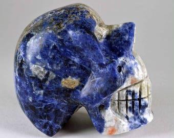 Sodalite Hand Carved Manus Skull