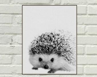 Baby Hedgehog Print, Printable Hedgehog Poster, Modern Minimalist Nursery Wall Art Print, Cute Nursery Animal Art, Baby Room Art