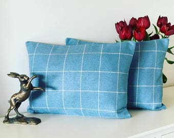 Beautiful oblong blue checked cushions.