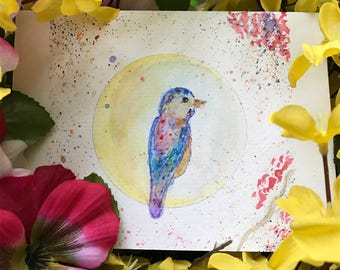 Spring Bird All Occasions Greeting Card