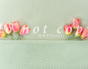 Tulip Newborn Digital Backdrop