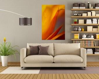 ROYAL - Fine Art Photography - Wall Art - Macro - Abstract - Decor - Abstract Nature - Macro Nature