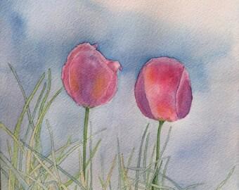 Blue Sky Tulips