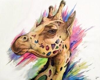Giraffe (11 x 14 print)