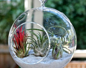 Plant Terrarium/Hanging candle holder, round with flat base
