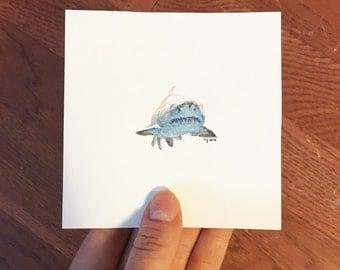 "Great White Shark, original 4""x4"" watercolor painting"