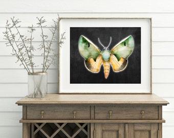 Moth Art Print - Green Moth Artwork, Watercolor Moth, Printable Moth, Glowing Moth, Butterfly and Moth, Digital download, 3d Moth art
