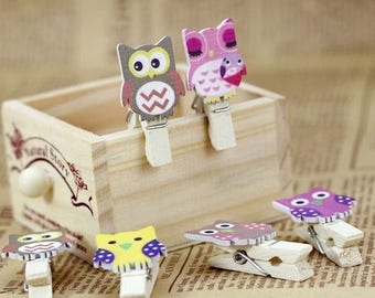 10 Mini Owl Wooden Clothespins with rope
