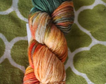 Pumpkin Patch- Worsted