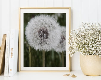 Dandelion print, dandelion art, dandelion printable, dandelion flower, dandelion poster, dandelion wall decor, nature photography