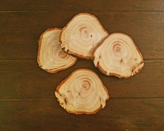 Natural Uniquely Shaped Coasters (Set of 4)