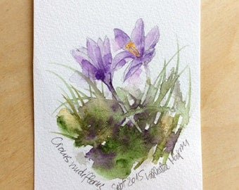 Original watercolor Crocus