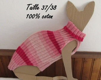Cotton pullover for sphynx