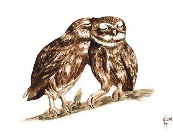 Snuggle Me Little Owls