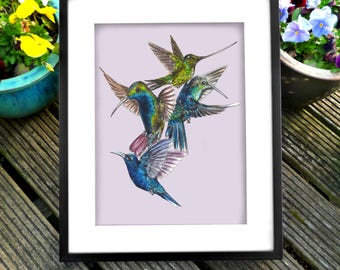 Hummingbird Group Print. Hand Drawn and Painted
