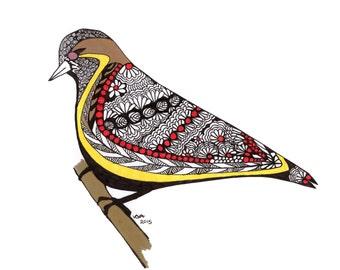 Birdsong Beauty