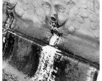 Florentine fountain gelatin silver print selenium toned