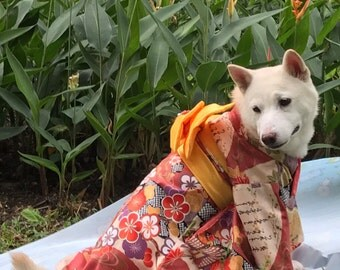 Kimono for dogs - custom made