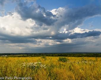 Golden Grasslands at the Overlook, Twin Creeks Metro Park, Germantown, Ohio,Landscape,Dark Blue Clouds,Dramatic Skies