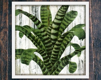 Tropical Plant Wall Art, Printable Rustic Wall Decor Beach, Large Square Printable Art, Rustic Wall Decor Bohemian, Green Leaves (#4098c)