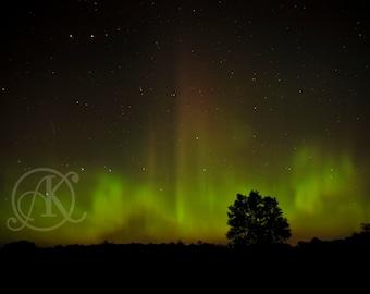 Minnesota Northern Lights II