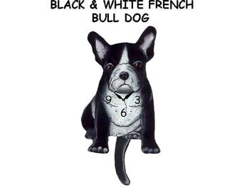 black & white french bull dog