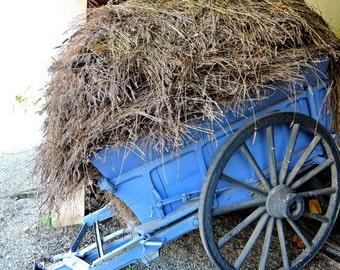 Lavender Cart Photo, Provence France