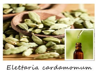 CARDAMOM ESSENTIAL OIL, Elettaria cardamomum, Cardamom Oil, 100% Pure Therapeutic Essential Oil