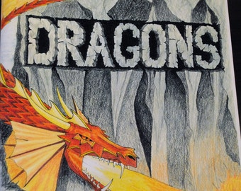 Dragon adult coloring book