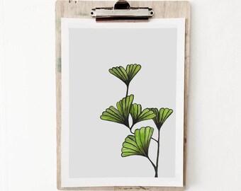 Gingko Leaf Print 2