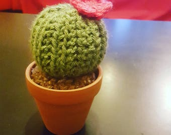 Little crochet cactus