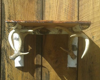 Whitetail Deer Antler Shelf