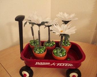 6 Mini Floral Pen Clay Pots