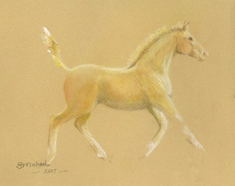 Lullabye: Champagne pony foal  Matted original pastel sketch