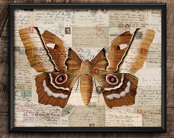 Moth · 10x8 · Instant Download · Vintage ·  Collage · Wall · Digital File #59