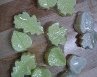 2 pack of leaf soap
