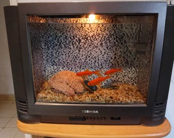 recycled art, television fish tank, gold fish, mind control, vintage television, aquarium, home decor, brain wash, office furniture, news