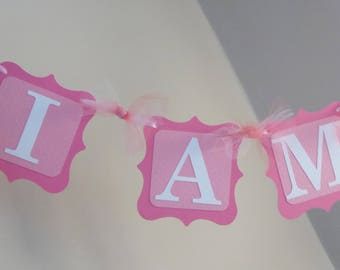 I am one bunting  banner first birthday party decor, photo prop