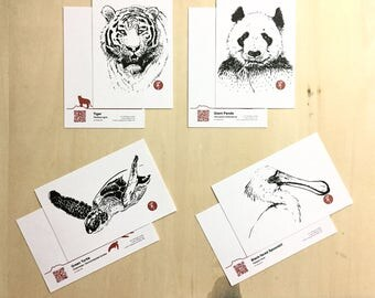Endangered Animal Postcards