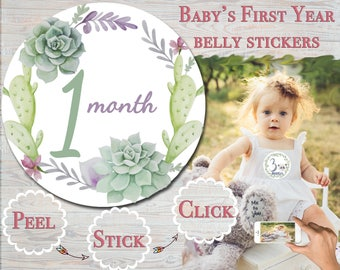 Cactus Month Stickers Baby Month Stickers Monthly Baby Stickers  Monthly Milestone Milestone Month Stickers  Baby Shower Gift gender neutral