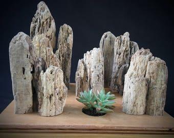 Driftwood Cliffs