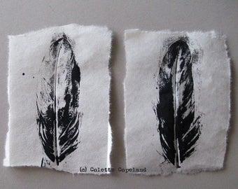 Feathers, hand pulled prints, acrylic on Japanese paper, 2 pieces