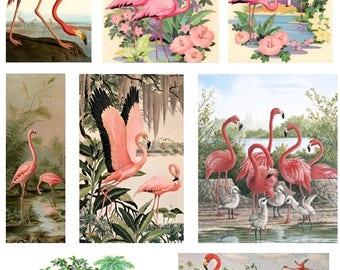 Retro Pink Flamingos - Digital Collage Sheet - Instant Download