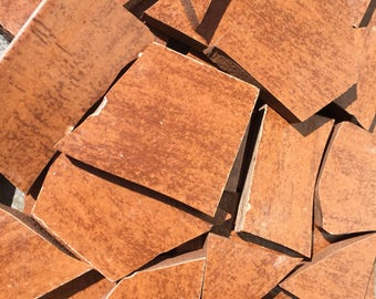 Mosaic Tiles 100 Pieces Floor Ceramic Tile Wood Grain Pecan Brown Color Shards Recycle