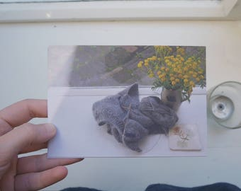 postcard set : mountain forest + morning scene