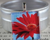 HOLIDAY CLEARANCE Red Daisy Fine Art Photo Glass Tile Pendant - Red Daisy - Red Blossom - Red Flower - Nature Photography