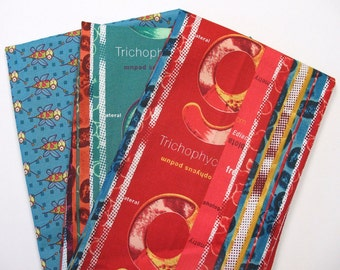 Free Spirit RP621 Jay McCarroll Cotton Quilting Fabric Remnant Pack